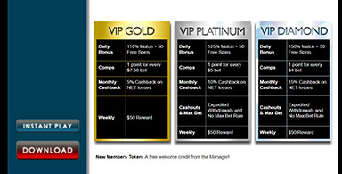 VIP Program.