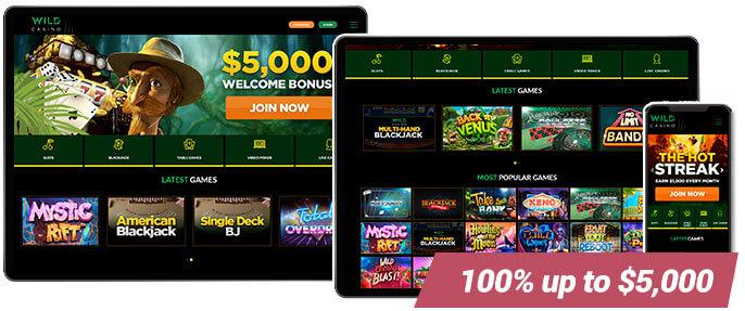 Best Casino Wild Casino Screens