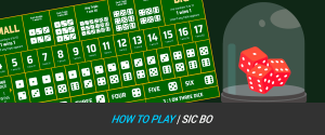 How To Play Sic Bo   Rules, Bet Types & Tips