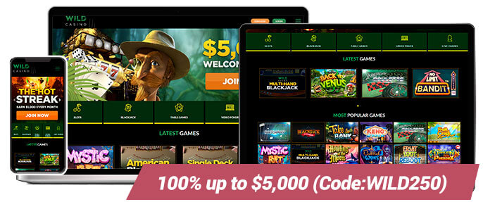 Real Money Casinos Wild Casino