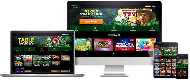 Image of Wild Casino on Different Devices