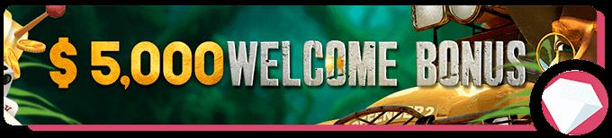 Wild Casion Welcome Bonus